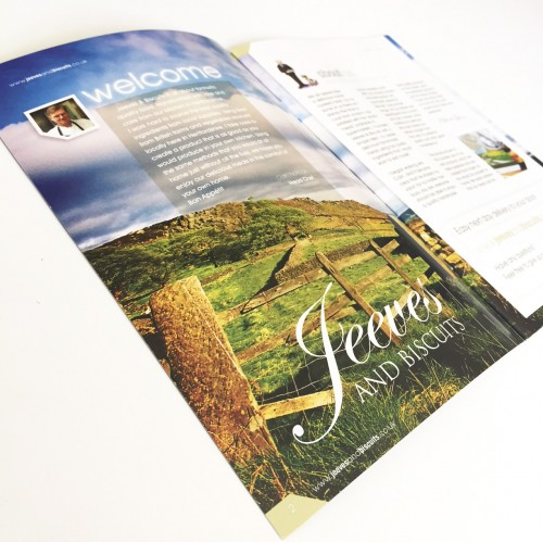 brochure_design_jeeves1